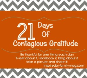 21 days of gratitude