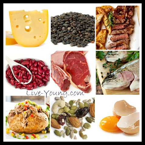 protein sources you can use
