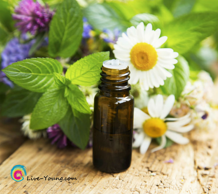 Essential oils for healing | new on Live-Young.com #aromatherapy