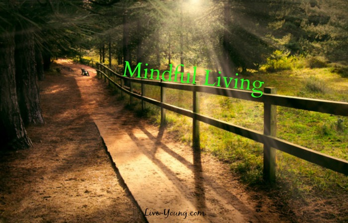 9 Ways to Be More Mindful in Everyday Life! | new on Live-Young.com #mindful